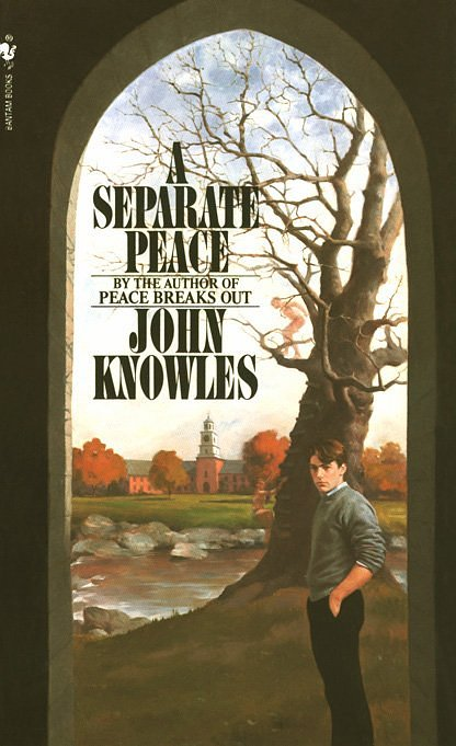The realities of war in a separate peace by john knowles
