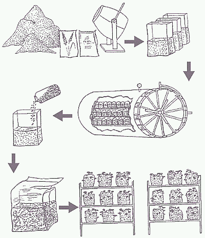 Книга: Выращивание грибов