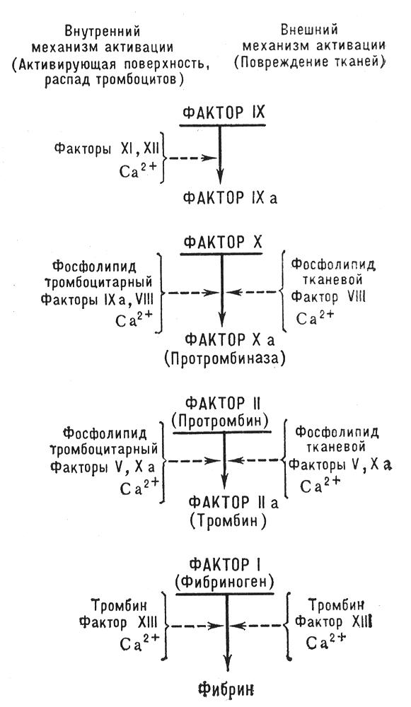 Книга: Большая Советская