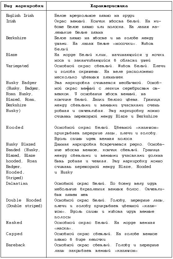 modern jewish thinkers from mendelssohn to rosenzweig