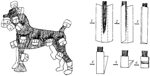 Схема накручивания папильоток