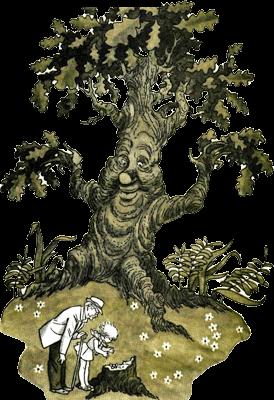 фото пенька дуба