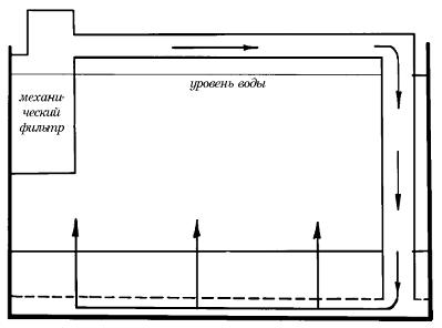Современный аквариум - техника и принадлежности