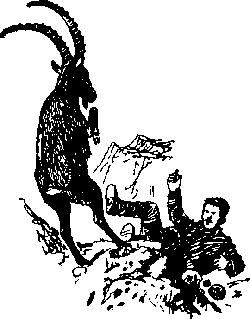 Ущелье барсов