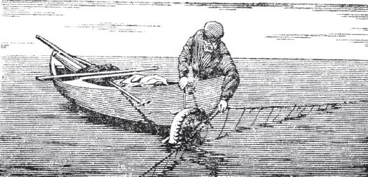 Книга: Крючковые рыболовные снасти