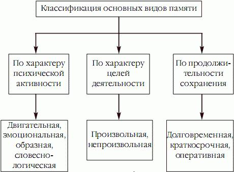 Классификация видов памяти по