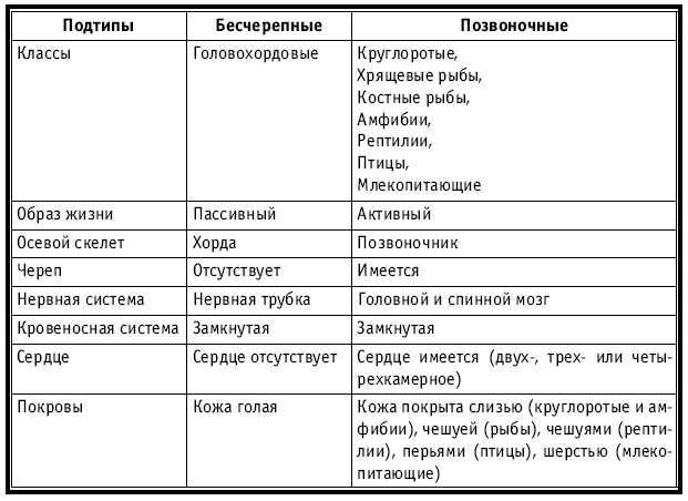 Типы в биологии схема