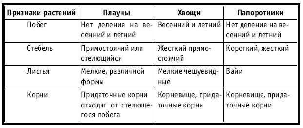 УРОК 16 (8)
