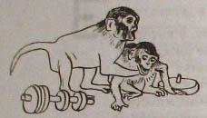 Непослушное дитя биосферы. Беседа третья и четвертая