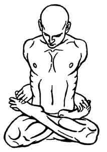 Йога-терапия. Новый взгляд на традиционную йога-терапию