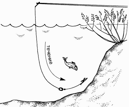 Книга: Большая книга рыболова