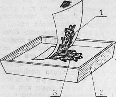 Переплет и реставрация книг