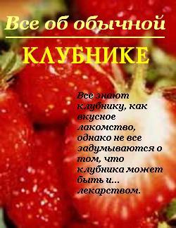 book кремний мифы и