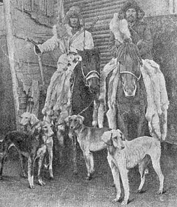Охота с борзыми: Краткий исторический очерк