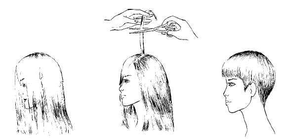 Книга: Кожа и волосы.