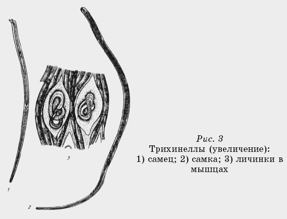 Книга: Новые тайны
