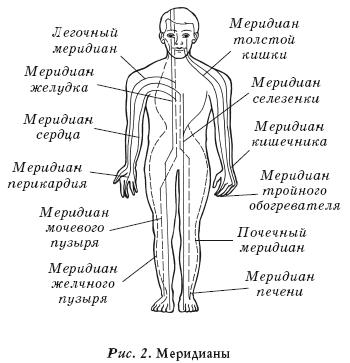 связывает поверхность тела