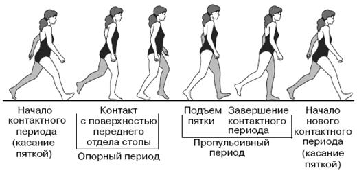 Все о здоровье ваших ног. От младенчества до старости