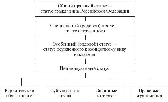 Виды и структура правового