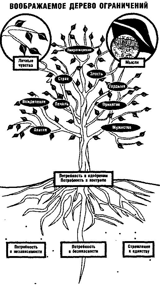 Все ограничения — плод нашего