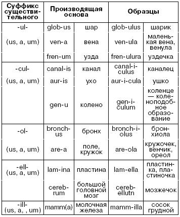 Книга: Латинский язык для